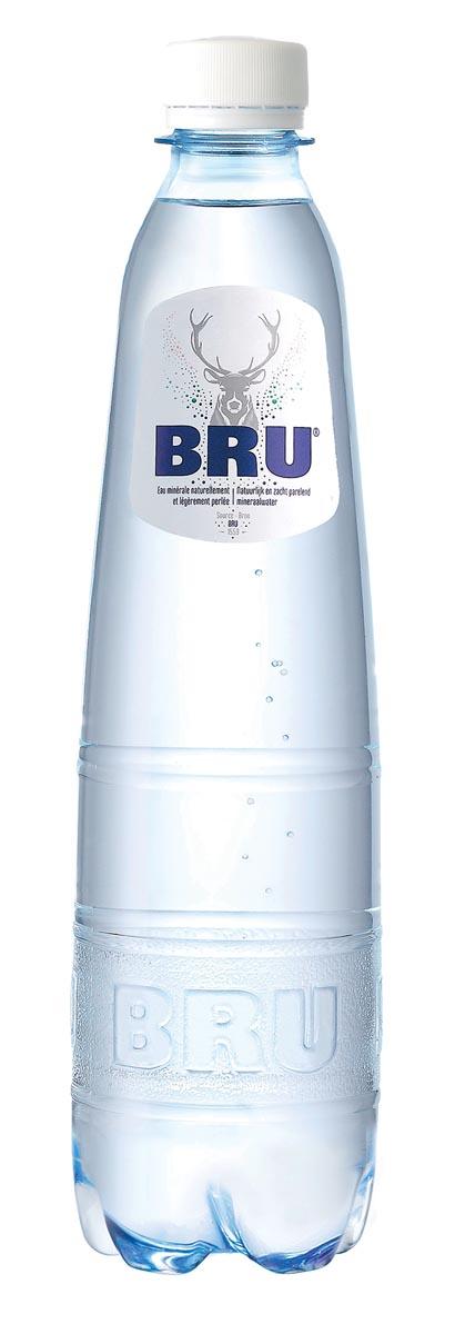 Bru lichtsprankelend water, fles van 50 cl, pak van 24 stuks
