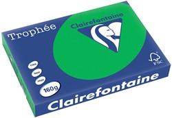 Clairefontaine Trophée Intens A3 biljartgroen, 160 g, 250 vel
