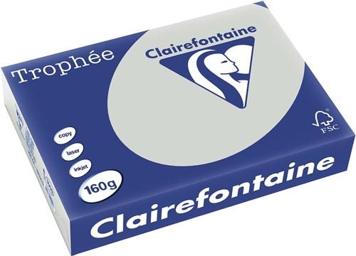 Clairefontaine Trophée Pastel A4 lichtgrijs, 160 g, 250 vel