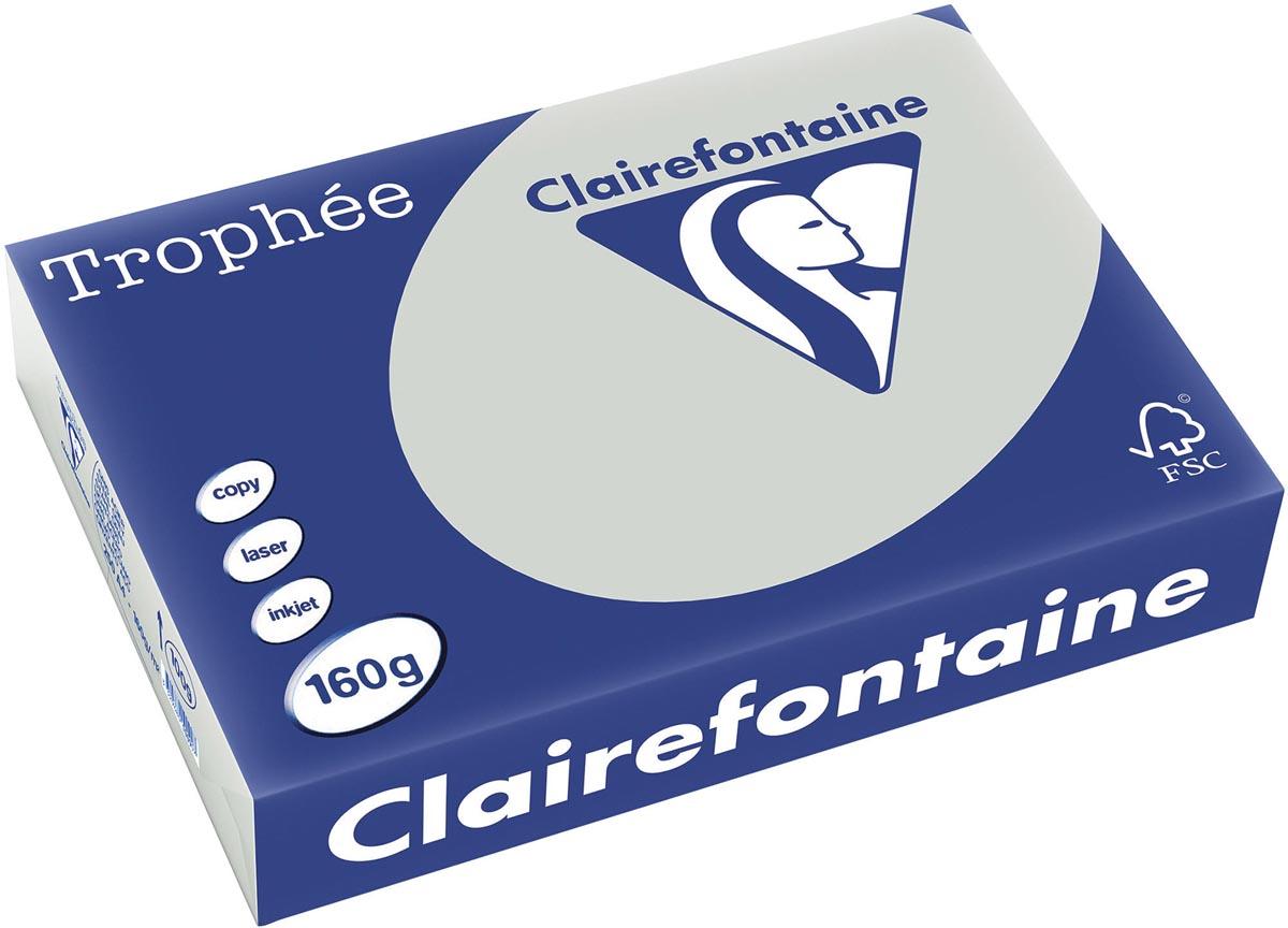 Clairefontaine Troph�e Pastel A4, 160 g, 250 vel, lichtgrijs