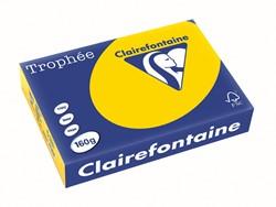 Clairefontaine Trophée Pastel A4 goudgeel, 160 g, 250 vel