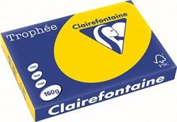 Clairefontaine Trophée Pastel A3 goudgeel, 160 g, 250 vel