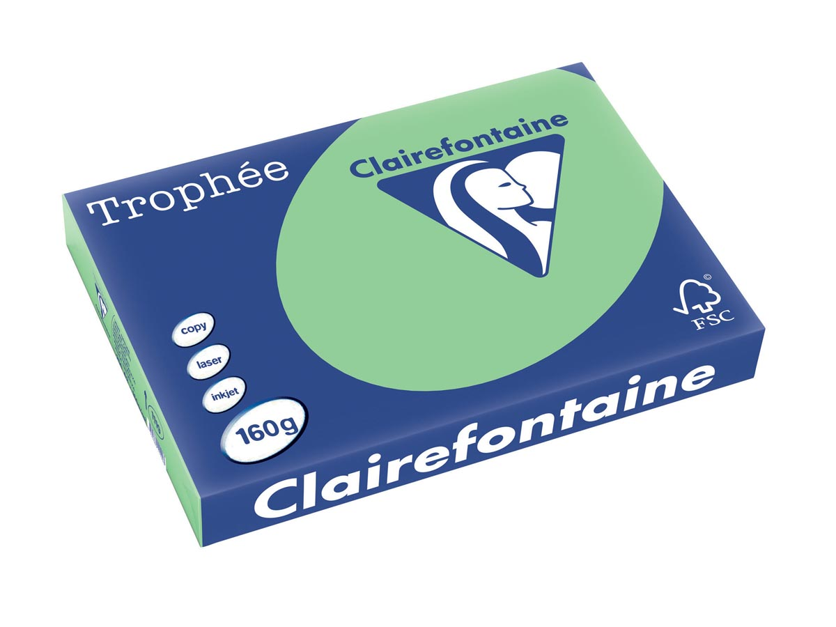 Clairefontaine Trophée Pastel A3, 160 g, 250 vel, natuurgroen