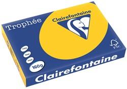 Clairefontaine Trophée Intens A3 zonnebloemgeel, 160 g, 250 vel