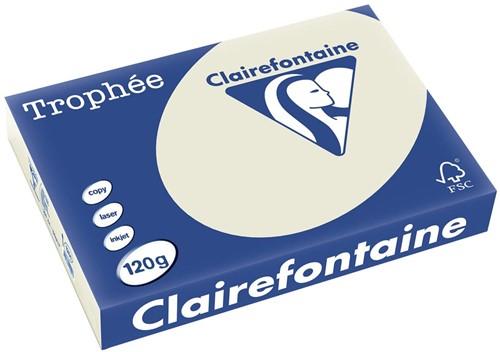 Clairefontaine Trophée Pastel A4 parelgrijs, 120 g, 250 vel