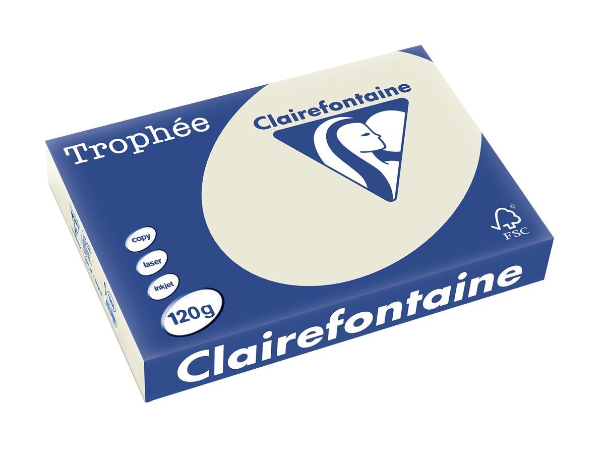 Clairefontaine Trophée Pastel A4, 120 g, 250 vel, parelgrijs