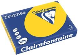 Clairefontaine Trophée Pastel A4 goudgeel, 120 g, 250 vel