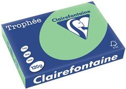 Clairefontaine Trophée Pastel A4 natuurgroen, 120 g, 250 vel
