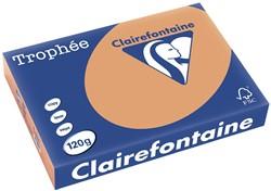Clairefontaine Trophée Pastel A4 mokkabruin, 120 g, 250 vel