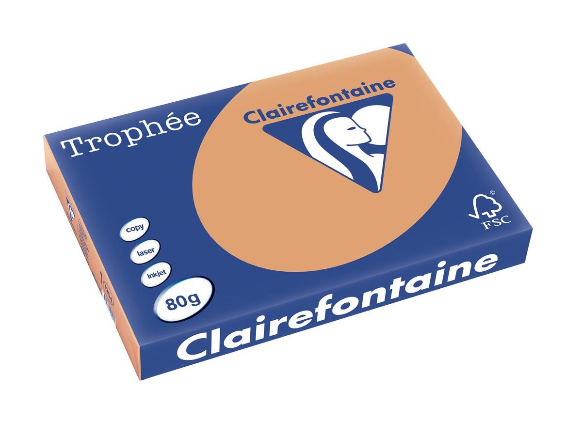 Clairefontaine Trophée Pastel A3, 80 g, 500 vel, mokkabruin