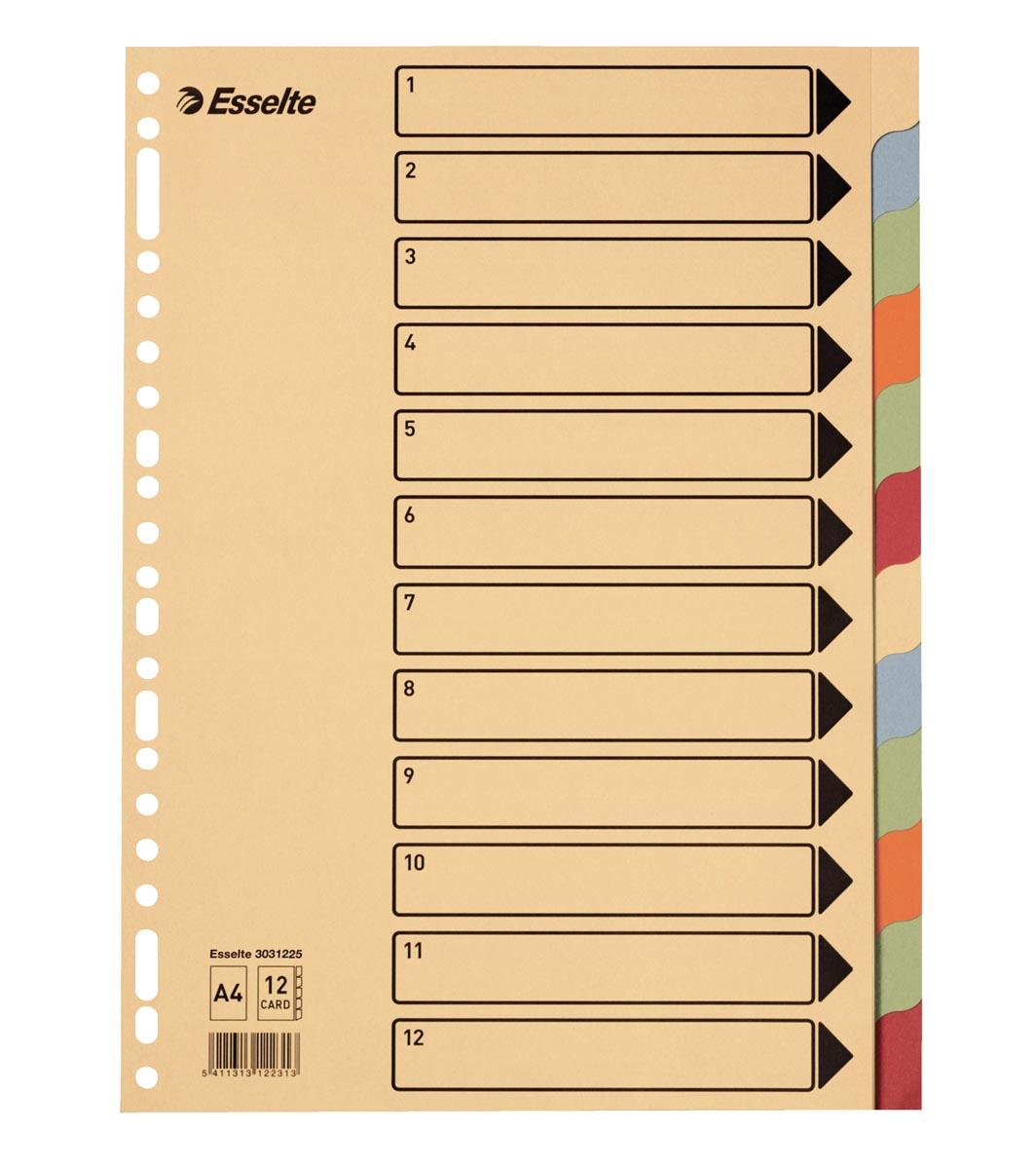 Esselte tabbladen 12 tabs, karton van 275 g/m²