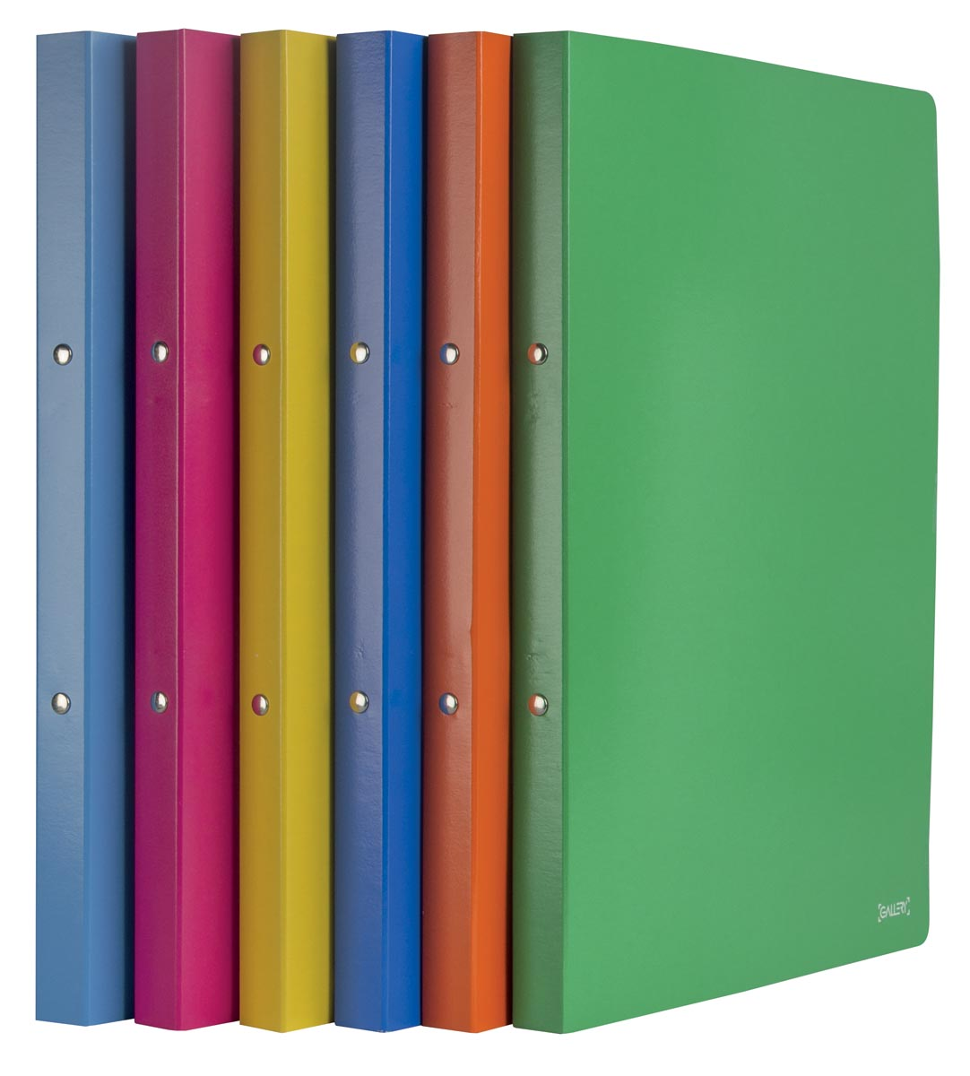 Gallery ringmap Passion For Colour, rug van 2 cm, karton, geassorteerde kleuren