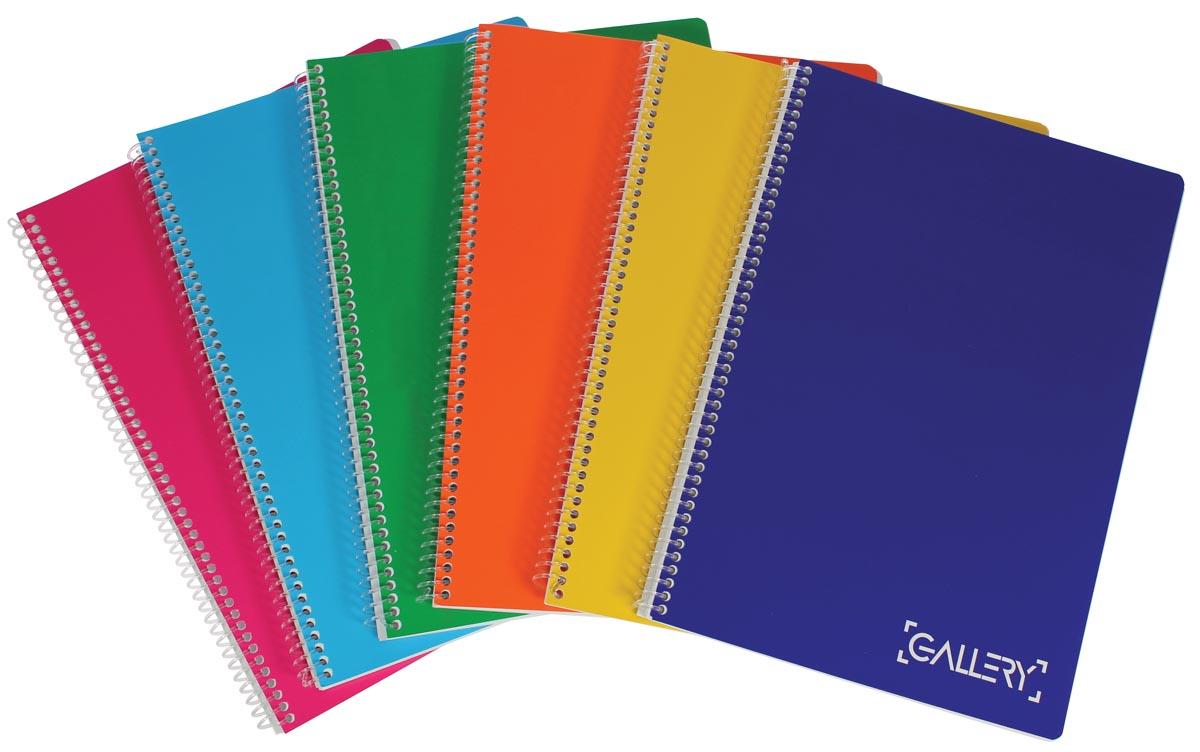 Gallery Passion For Colour spiraalschrift, geassorteerde kleuren, ft A4, gelijnd