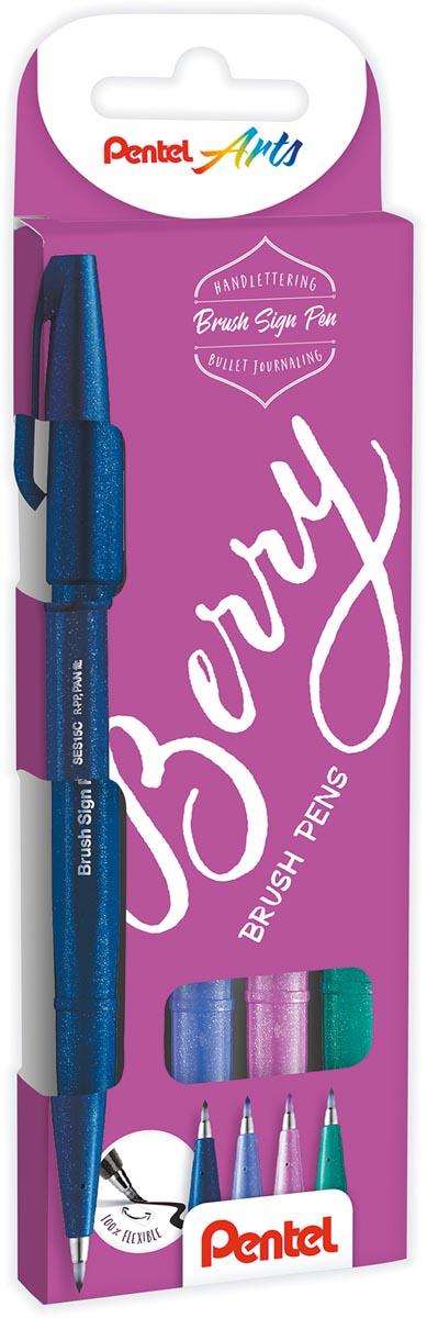 Pentel brushpen Sign Pen Brush Touch, kartonnen etui met 4 stuks: donkerblauw, paars, rose en turquo