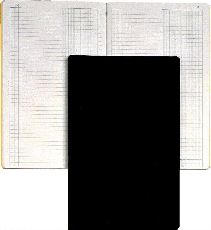 Exacompta journaal, ft 32 x 19,5 cm, Nederlandstalig