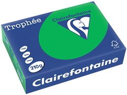 Clairefontaine Trophée Intens A4 biljartgroen, 210 g, 250 vel