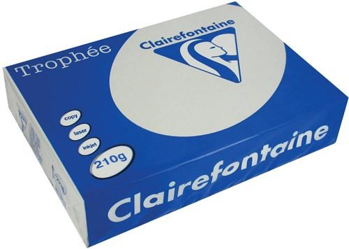 Clairefontaine Trophée Pastel A4 lichtgrijs, 210 g, 250 vel