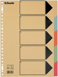Esselte tabbladen voor ft A4 karton 5 tabs               23 perforatiegaten