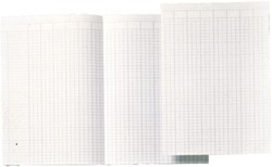 Atlanta by Jalema Accountantspapier ft A4, opengevouwen tot 29,4 x 41,4 cm