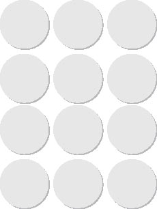 Apli ronde etiketten in etui diameter 25 mm, wit, 72 stuks, 12 per blad (2664)