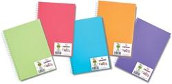 Canson schetsboek A5 met 50 vellen van 120 g, geassorteerde kleuren