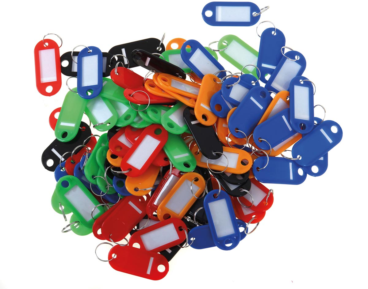 Sleutelhangers geassorteerde kleuren x100