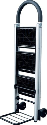 Ladder en steekwagen combinatie-2