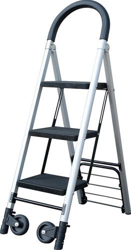 Ladder en steekwagen combinatie