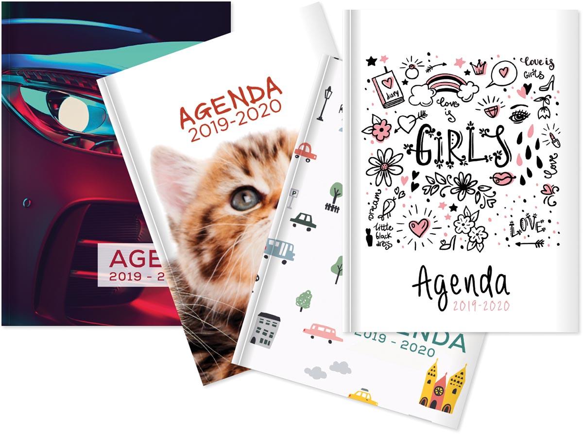 Aurora Academia/Foto Say Why, 4 motieven, 2020 - 2020