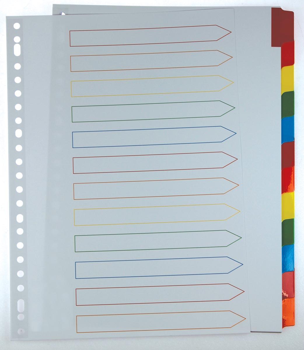 Pergamy tabbladen met indexblad, ft A4, 11-gaatsperforatie, geassorteerde kleuren, 12 tabs