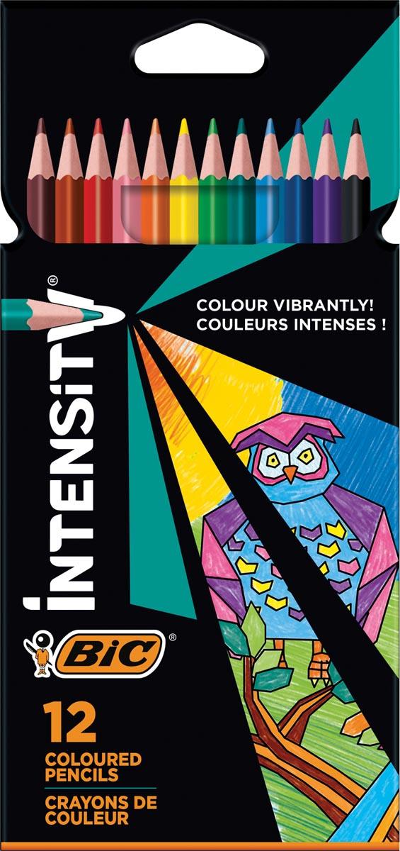 Bic kleurpotlood Color Up, etui van 12 stuks