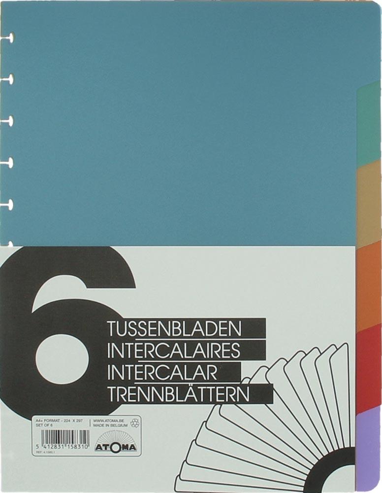 Oxford Office Essentials European Book, 240 bladzijden, ft A4+, geruit, geassorteerde kleuren