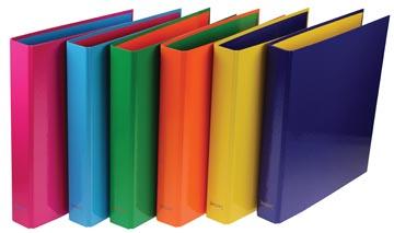 Gallery Passion For Colour ringmap, rug van 4 cm, karton, geassorteerde kleuren