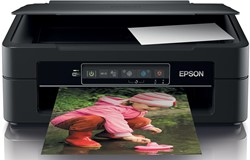Epson printer Expression Home XP-245